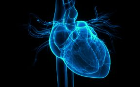 Hologramowe serce człowieka